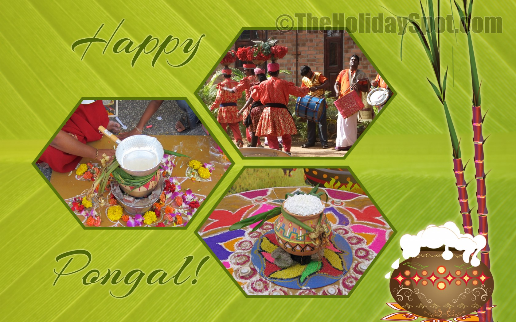happy pongal or right click the image to save or set as desktop ...