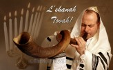 Shofar Delight