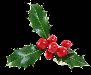 Christmas Decorations Miseltoe