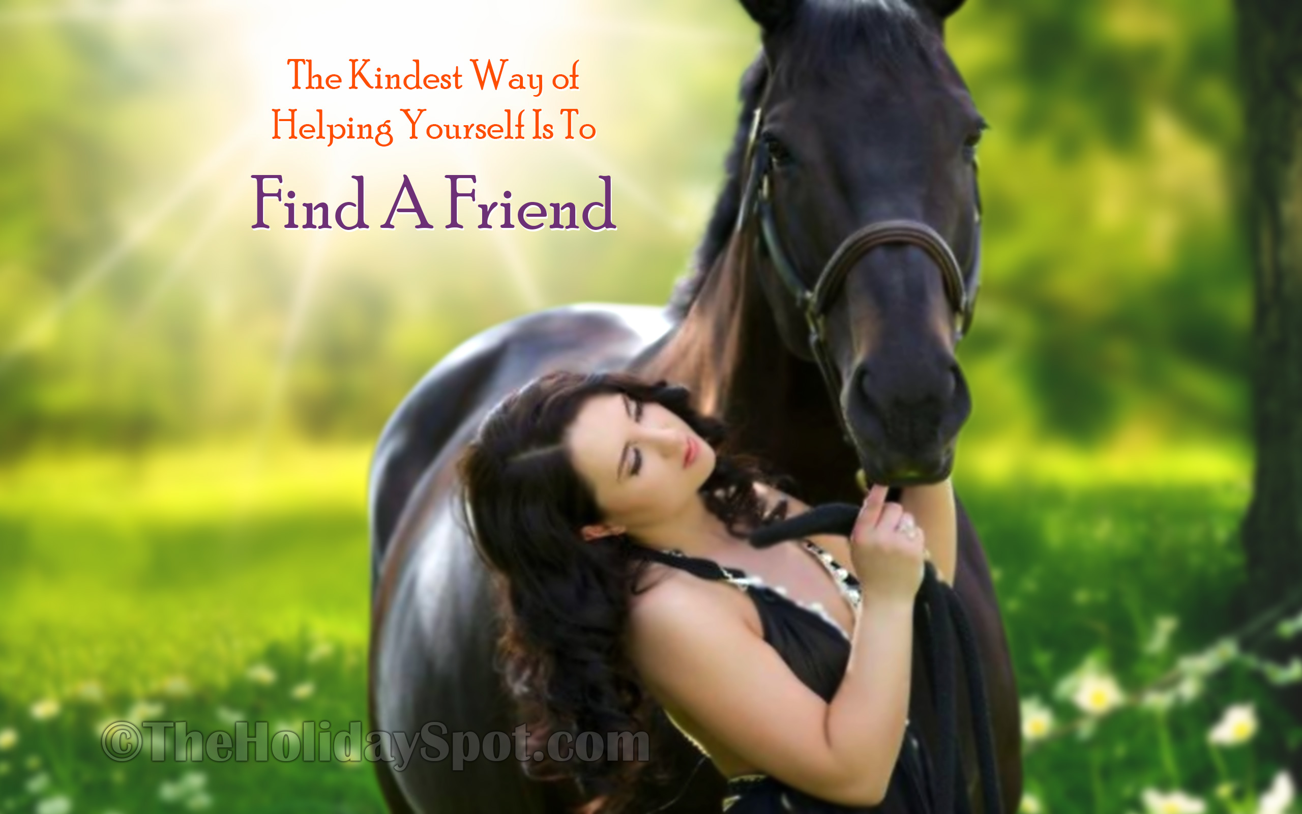 Friendship Wallpaper Of A Women And Horse