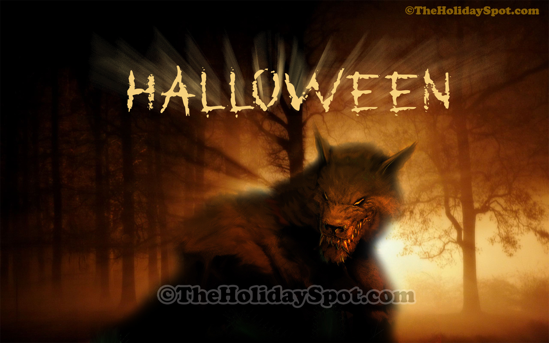 Most Inspiring Wallpaper Halloween Tablet - halloween  Trends_475872.jpg
