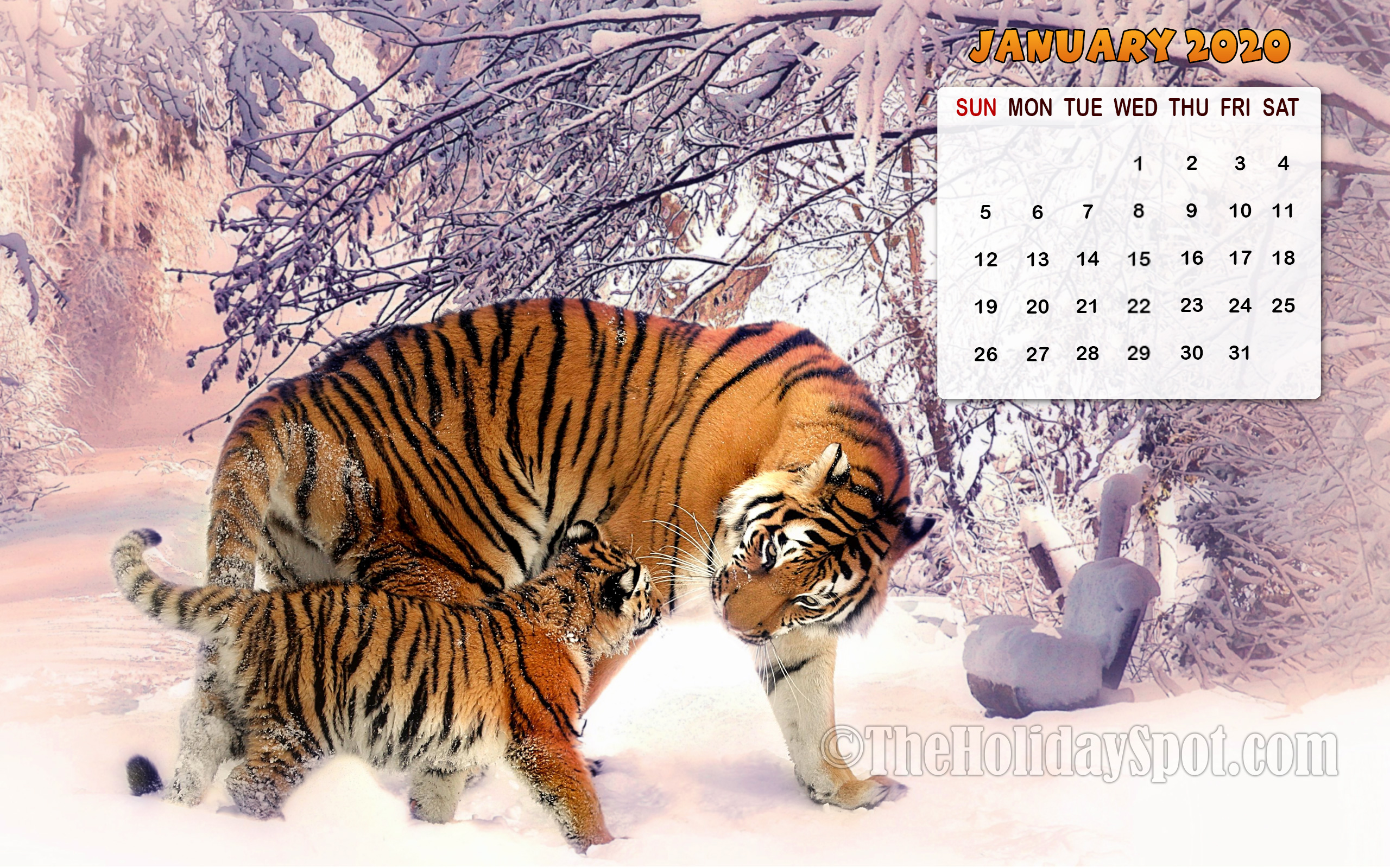 Month wise Calendar Wallpapers of 2020 | 1080p HD Calendar ...