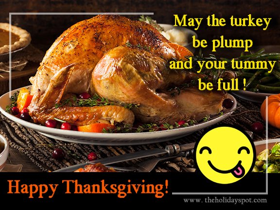 May the turkey be plump and your tummy be full