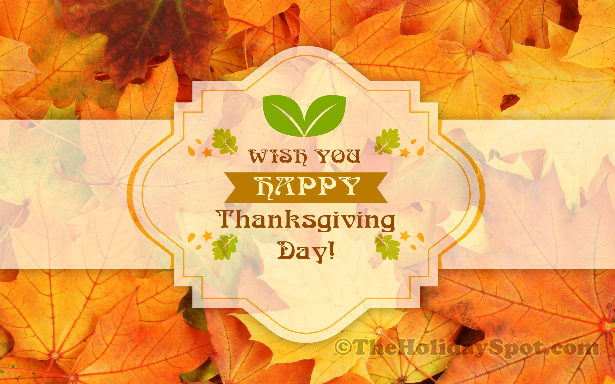 Happy Thanksgiving Day Wallpaper