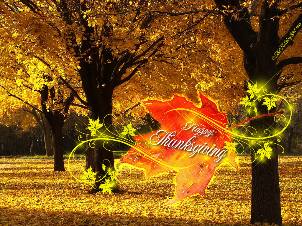 http://www.theholidayspot.com/thanksgiving/wallpapers/new_images/thanksgiving-wallpaper-01.jpg