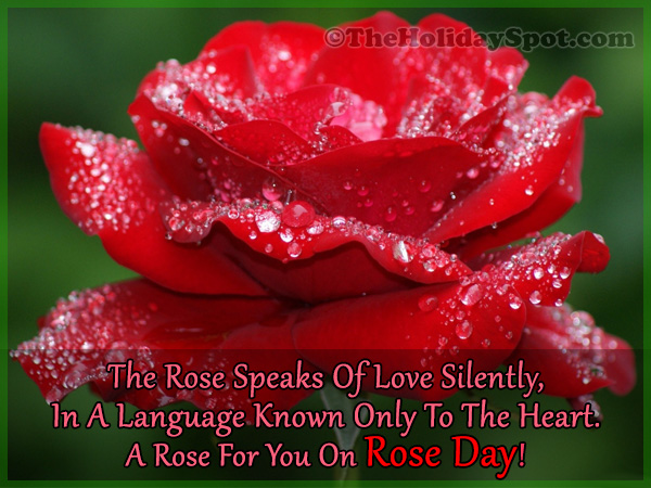 Valentine S Week List 2019 Rose Day Hug Day Kiss Day And Other