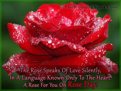 Rose Day Card