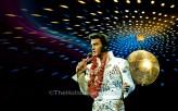 Rocking Elvis