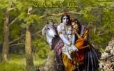 Shri Krishna & Radha