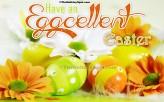 Have an Eggcellent Easter