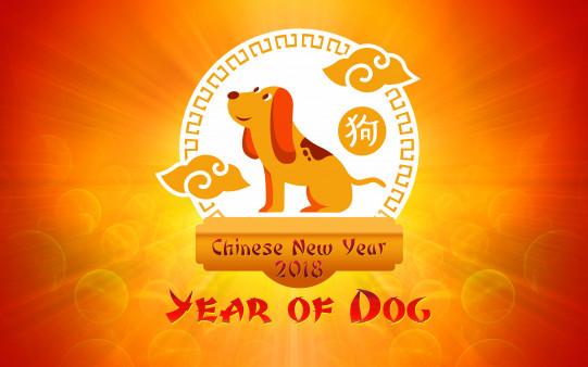 homepage chinese new year chinese new year 2018 year of dog