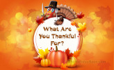 What Are You Thankful For…
